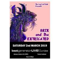 Brix and the Extricated Image