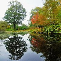 Camperdown Country Park Image
