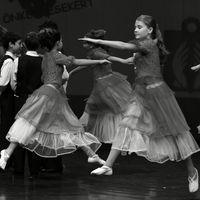 Line Dancing Image