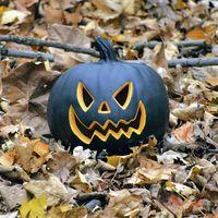 Halloween Takeover Tour at Verdant Works Image