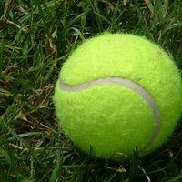 Mini Green Tennis (9-10 years) Image
