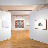 Free Lunchtime Tour of Ley Lines Exhibition Image
