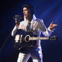Elvis in Vegas Image