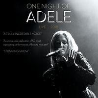 One Night of Adele Image