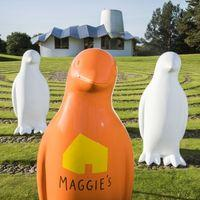 Maggies Penguin Parade Image