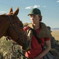 Bring a Baby: Lean on Pete Image