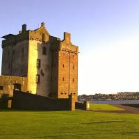 Summer Wildlife at Broughty Castle Image
