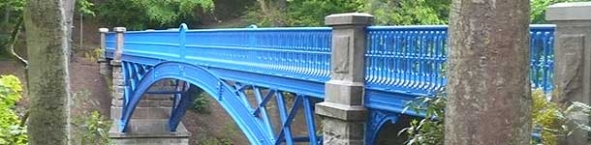 Photo of bridge in Balgay Park