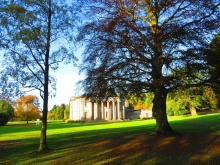 Camperdown Country Park with mansion house in the background