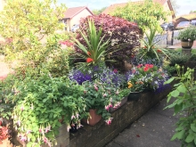 Category 5 (Residential Front Garden or Entrance) - First Place & Overall Garden Competition Winner (2)