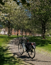 Magdalen Green with bicycle