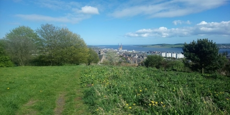 Dundee Law tree-planting event Image