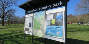 Improvement works set for parking facilities at Camperdown  Image