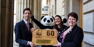 Dundee Hailed 2018 Local Authority Earth Hour Champions  Image