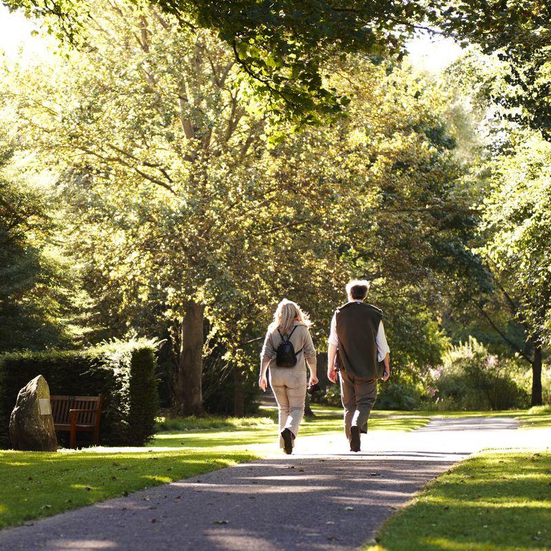 Angus Glens Walking Festival   Image