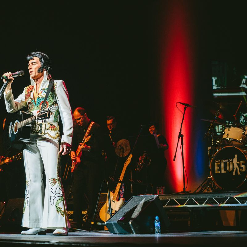 One Night of Elvis Image