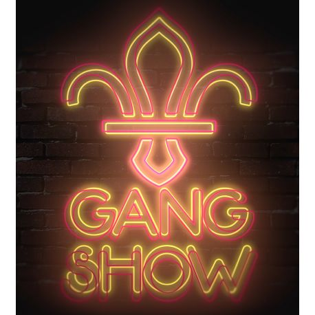 Dundee Scout Gang Show Image