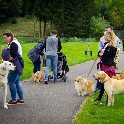 Dog Friendly Event Image