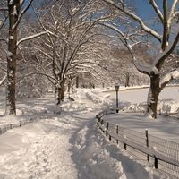 Winter Concert, Tayside Opera Image