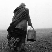 The Turin Horse Image