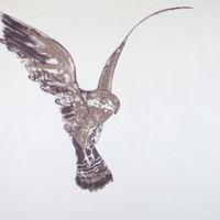 Avem: A Journey with Birds  Image