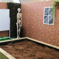 CSI Dig Pit Image