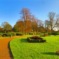 Love Parks Week Image