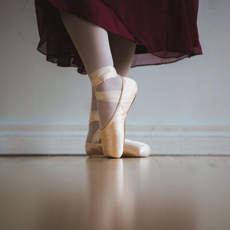 Ballet Bunnies Image